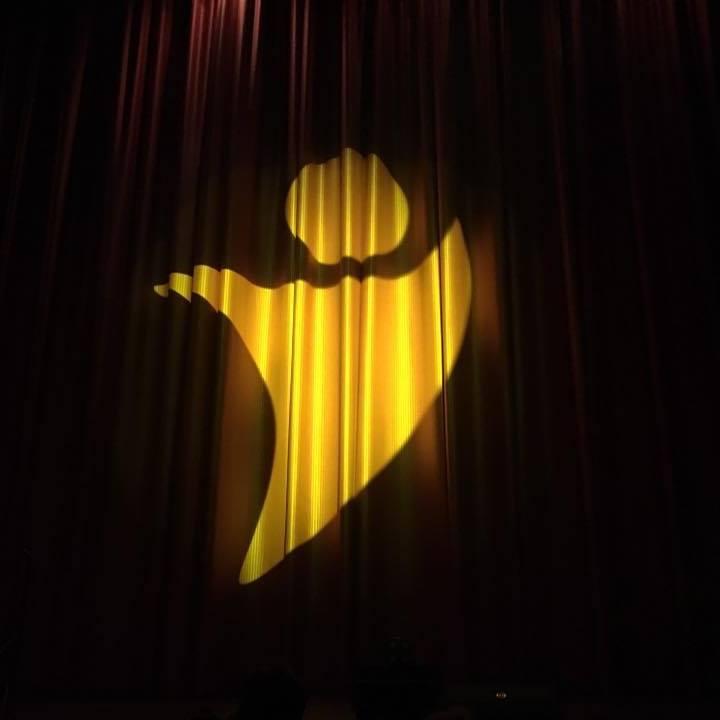 logo_vorhang